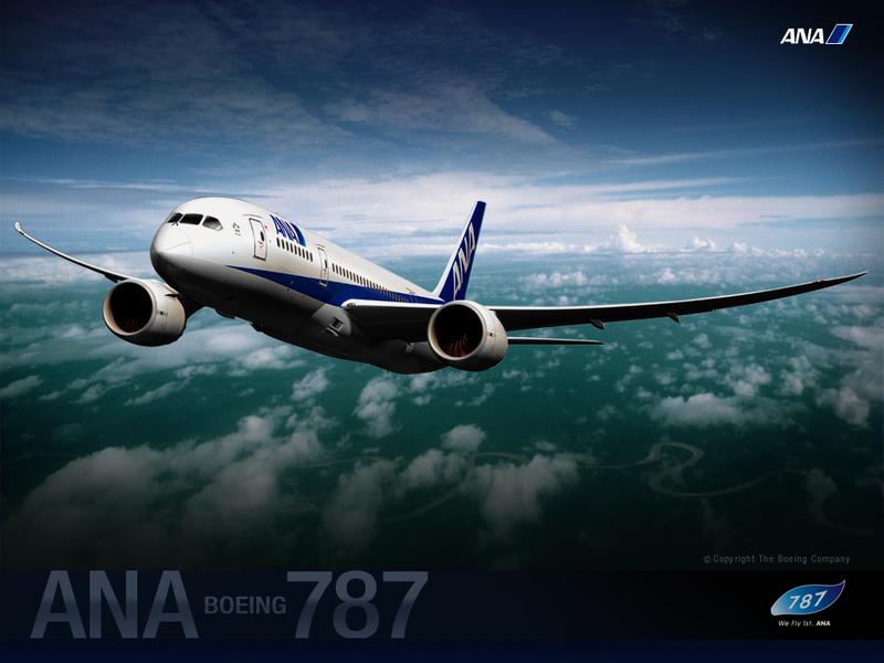 Ana7873